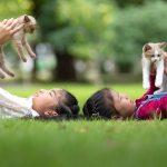 AWAS! Jangkitan Parasit Daripada Haiwan Kesayangan